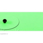 Kydex Safety Green 2 mm / 15 x 30 cm